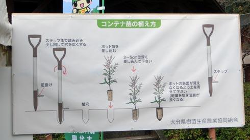 豊かな国の森づくり 植え方